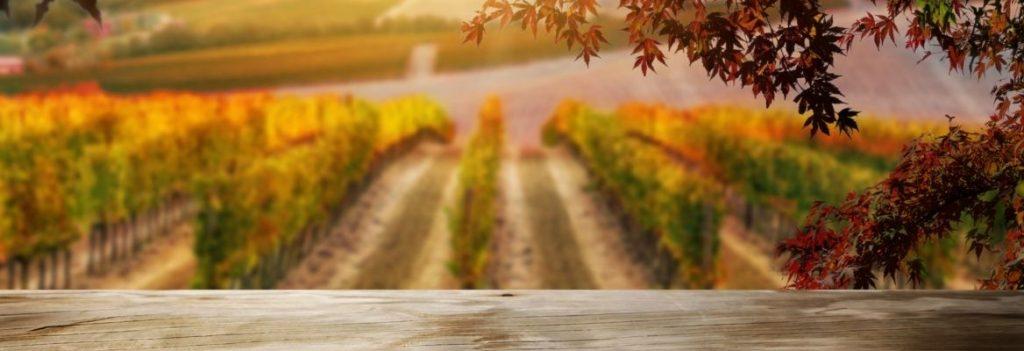 Farm and Rural Insurance Australia